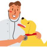 【子犬図鑑】初めてのワクチン・予防接種/接種後の副作用と絶対にやってはいけないこと!